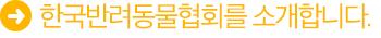 한국반려동물협회란 무엇인가요?